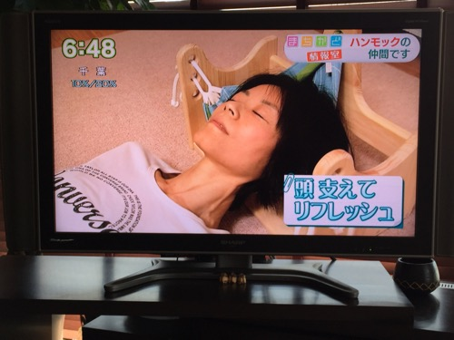 NHKまちかど情報室 ハンモックピロー